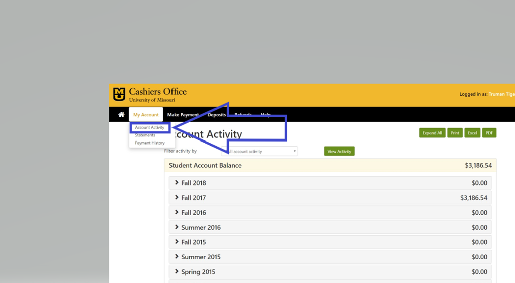 Screen shot of account activity selection on Touch Net.