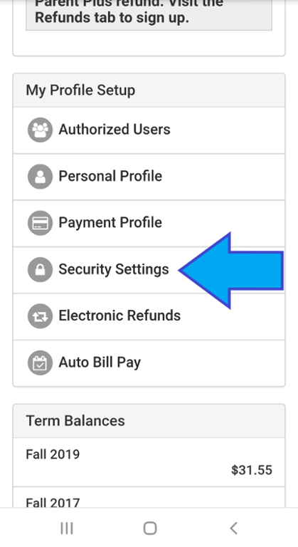 Mobile screenshot of select security settings on touch net